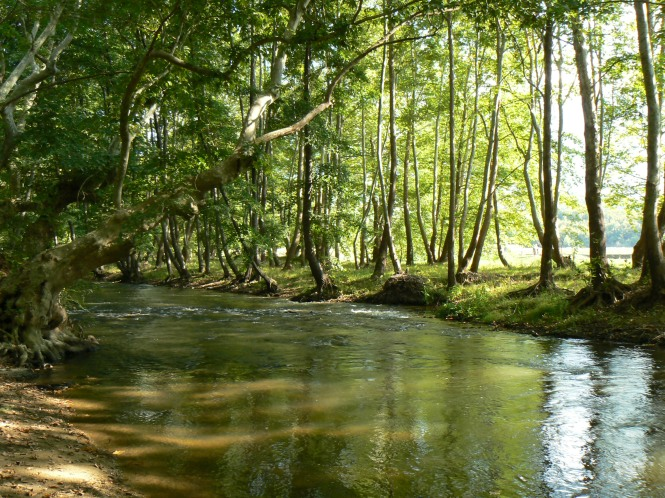 Strumeshnitsa-river-2