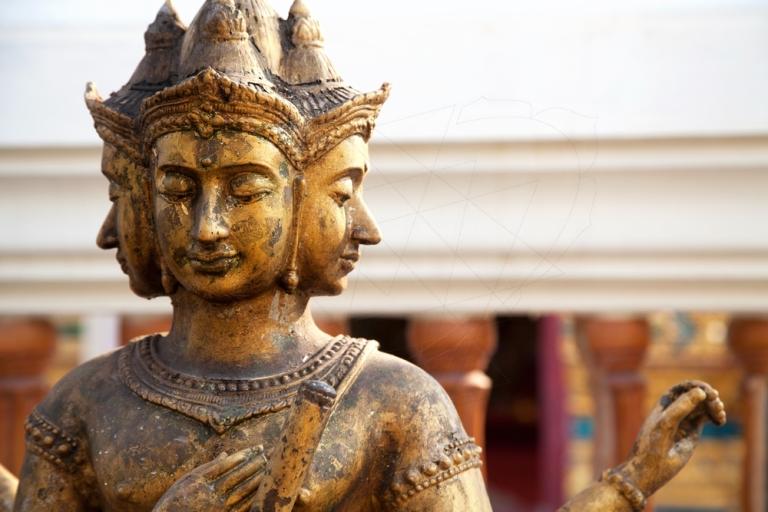 Brahma.jpg