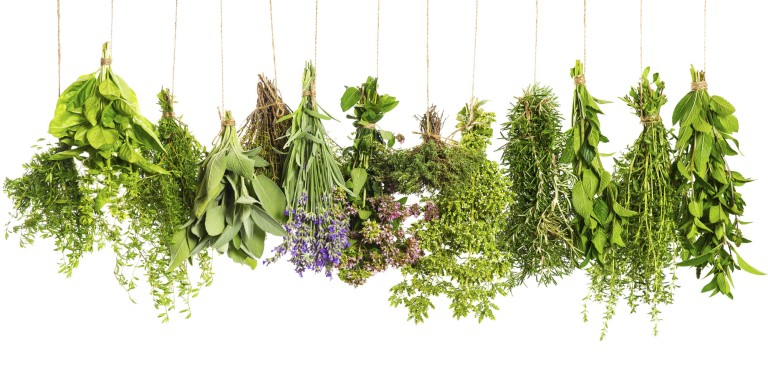 o-COOKING-WITH-HERBS-facebook.jpg